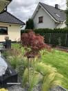 Projektowanie, zakładanie ogrodów oraz pielęgnacja